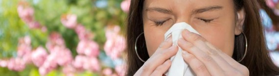 natural interferon for allergies