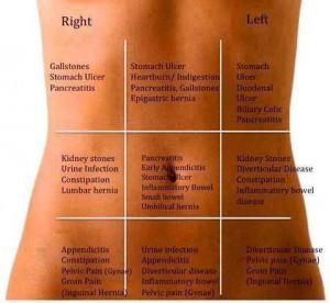 digestion health