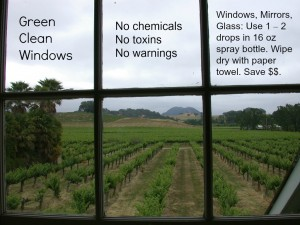 green-clean-windows