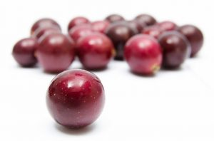 vivx muscadine grape