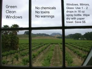 green-clean-windows
