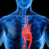heart_health-month-2012