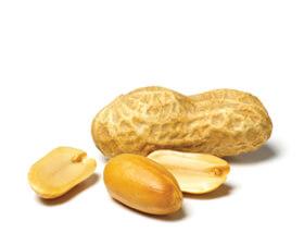 crunchy peanut butter protein snack bar