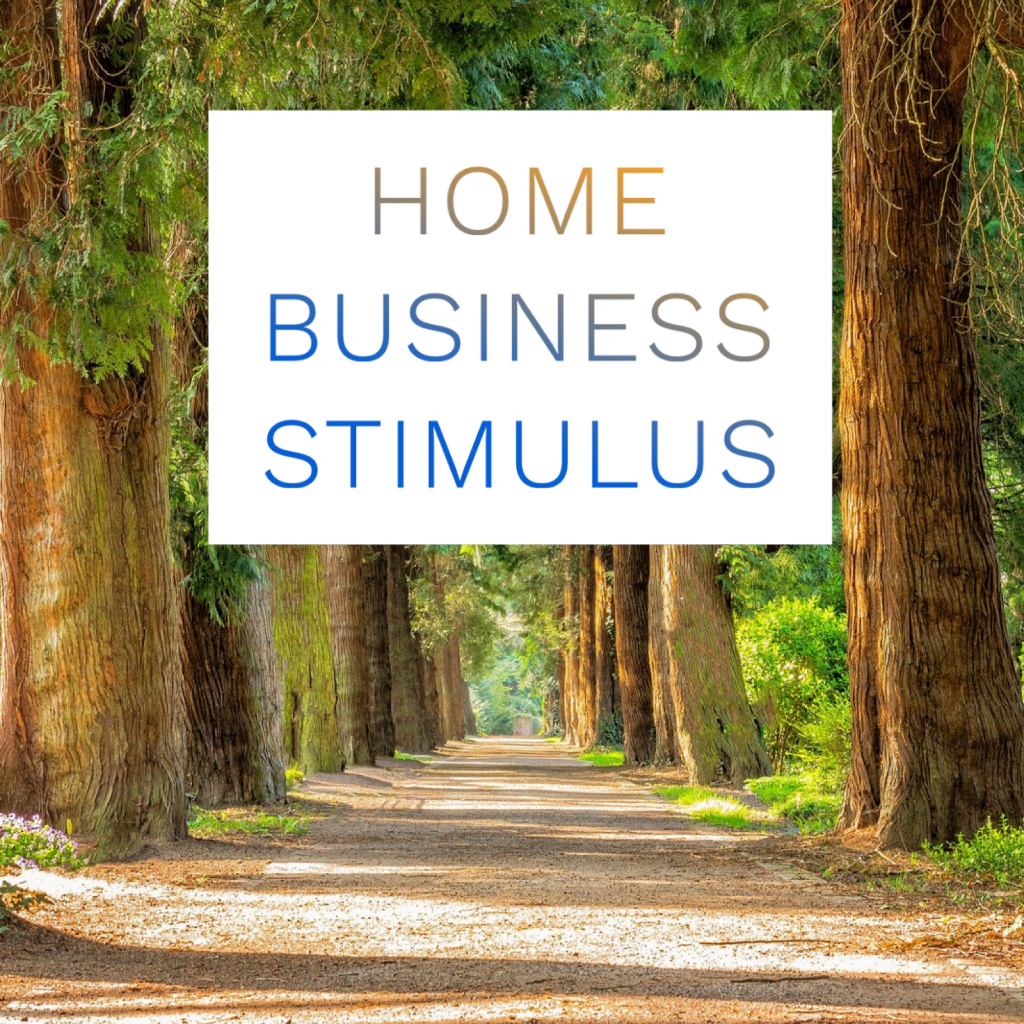 home business stimulus